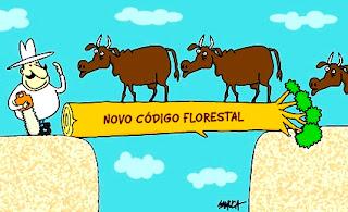 código, florestal, ruralistas, ambientalistas, veta, Dilma, desmatamento