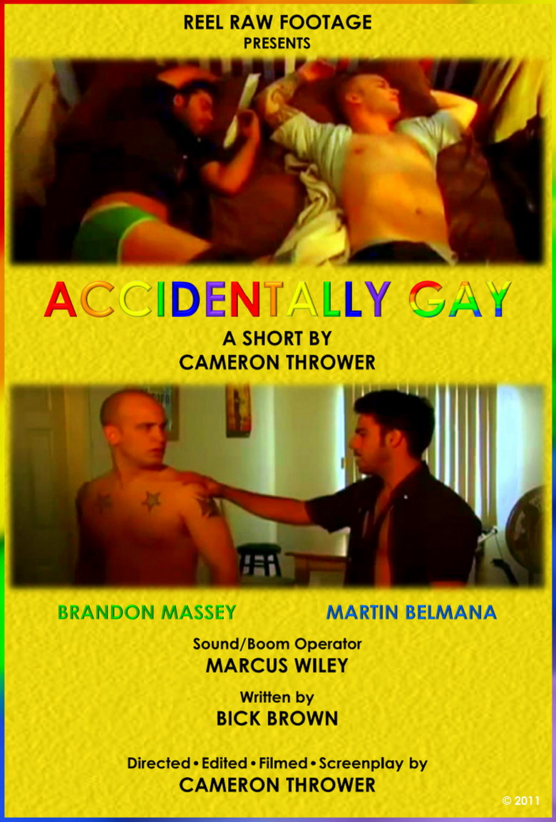 Accidentally Gay (2011)