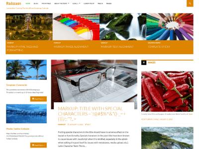 Ridizain WordPress Theme