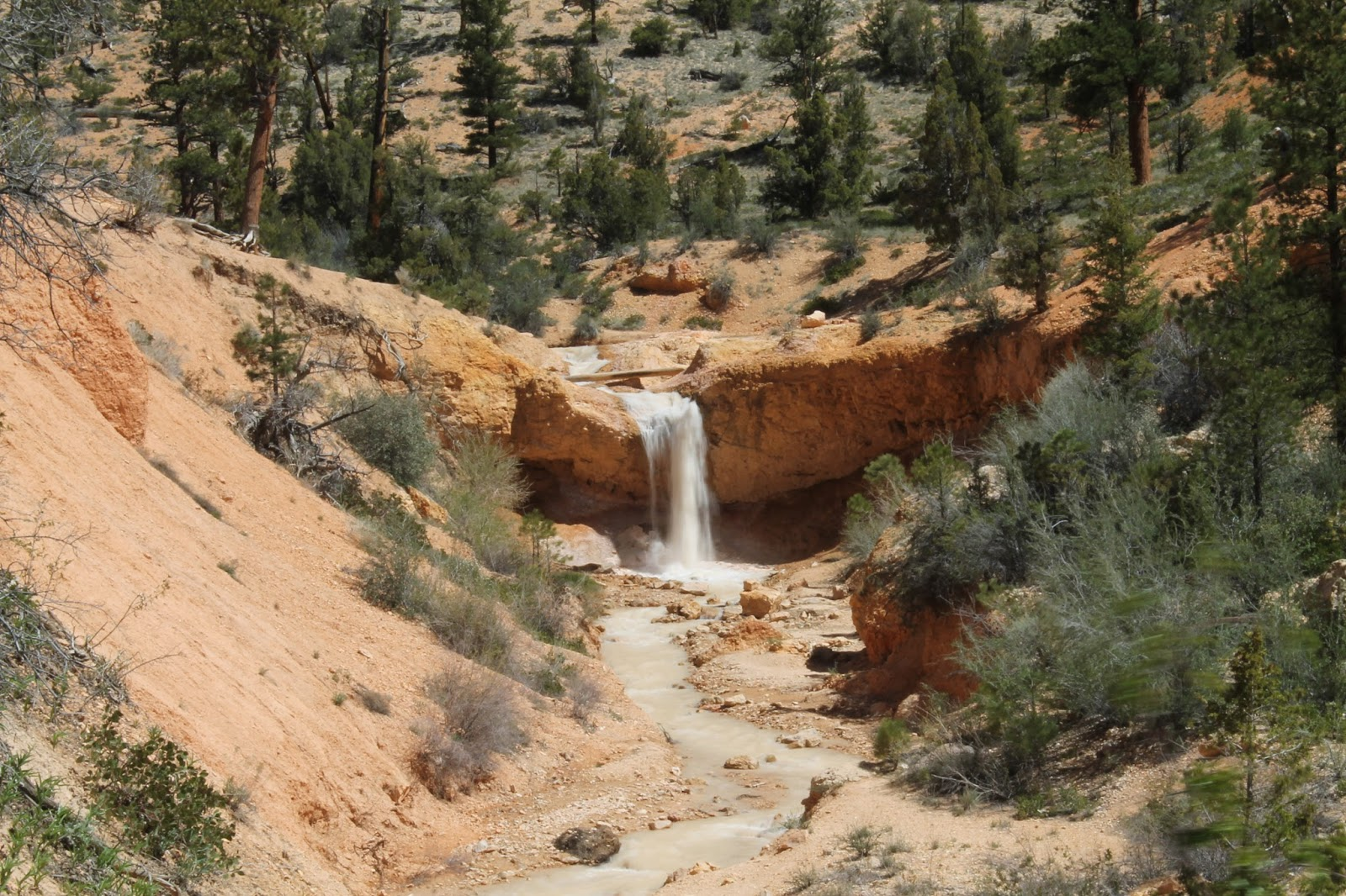 Discoveries: Bryce Canyon, Mossy Cave, Sandberg Ranch