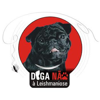 Movimento Diga não à Leishmaniose, o cão não é o vilão!