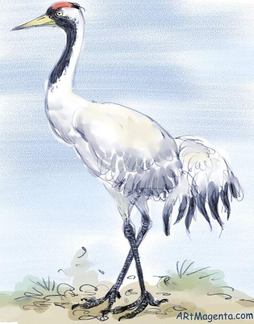 En fågelmålning av en trana från Artmagentas svenska galleri om fåglar