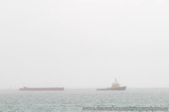 Pacific Way, a tugboat built in 1960, still pulling dump barges in the Hawke Bay fog photograph