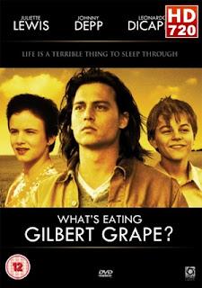 Ver peliculas ¿A quién ama Gilbert Grape? (1993) gratis