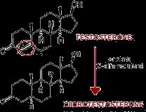5-alfa reduttasi e formazione del DHT