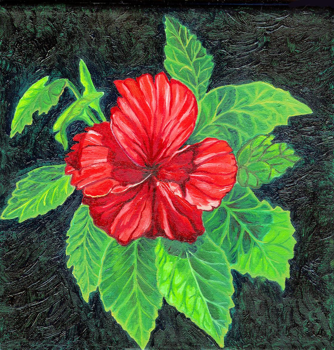 Dibujar pintar y mucho m s lienzos de bolsillo el - Pintar en lienzo para principiantes ...