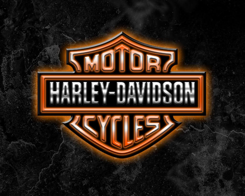Le Logo Harley Davidson En Tissus Seul