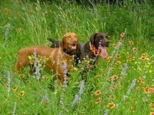 Saynga With Her Sister, Kieva!