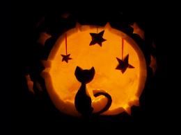 Halloween, 24/7