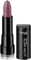 Preview: Die neue dm-Marke trend IT UP - Ultra Matte Lipstick 020 - www.annitschkasblog.de