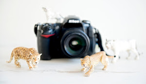 CURSO ONLINE DE FOTOGRAFÍA