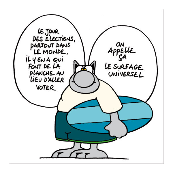 Politique ou vas-tu ? le-chat-geluck-vote-ou-abstention2