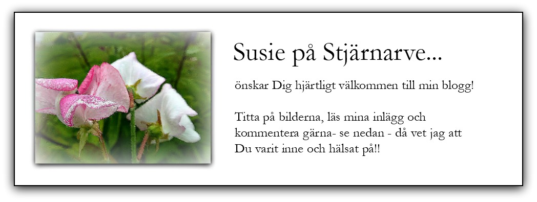 Susie på Stjärnarve...