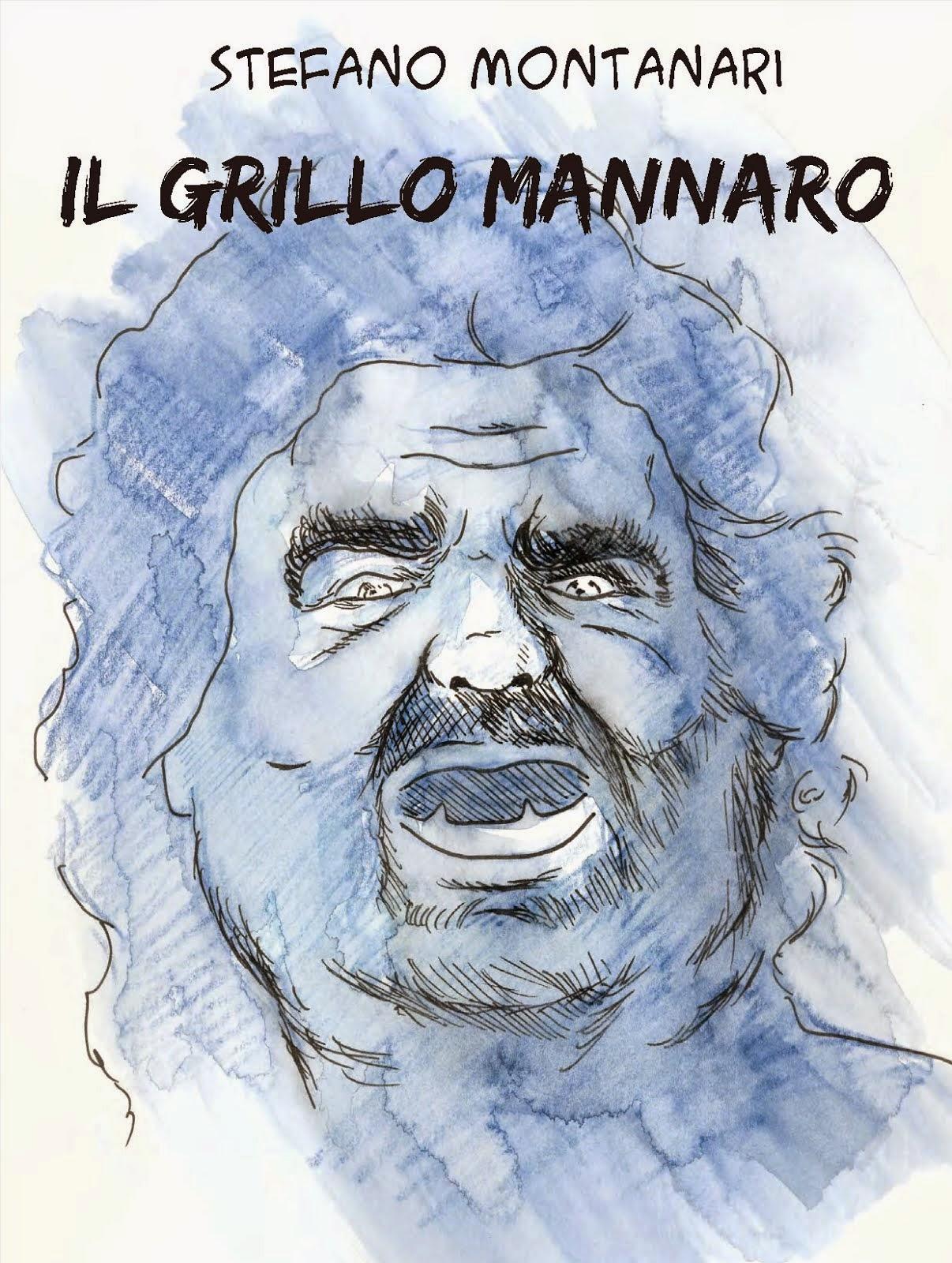 La verità su Beppe Grillo