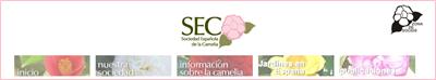 http://www.cameliagalicia.com/rosalia.html