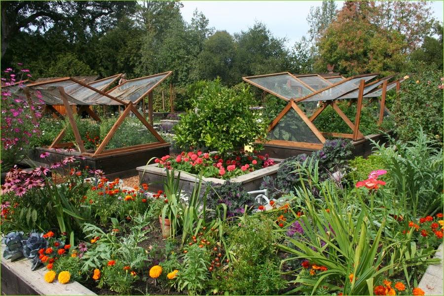 Vegetable Garden Fencing Ideas The Healthnut Foodie Organic