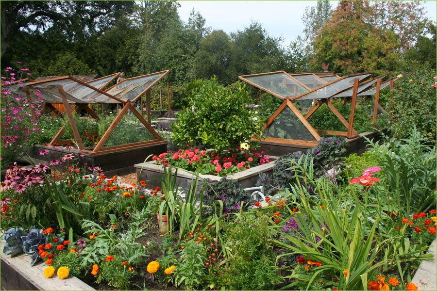 Country Vegetable Garden Ideas vegetable garden layouts - aralsa