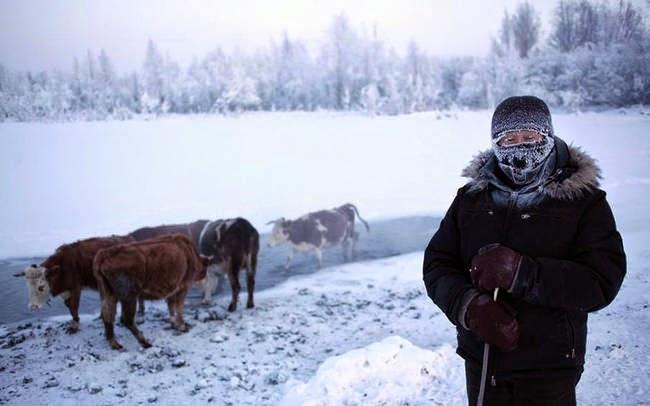 أويمياكون بروسيا -أبرد منطقة في الأرض- desktop-1419271502.j