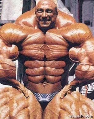 ME DUELE EL CUERPO Bodybuilder