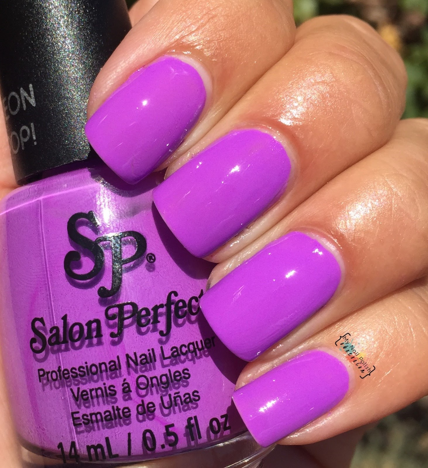 Salon Perfect Purple Pop