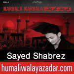 http://www.humaliwalayazadar.com/2015/10/sayed-shabrez-nohay-2016.html