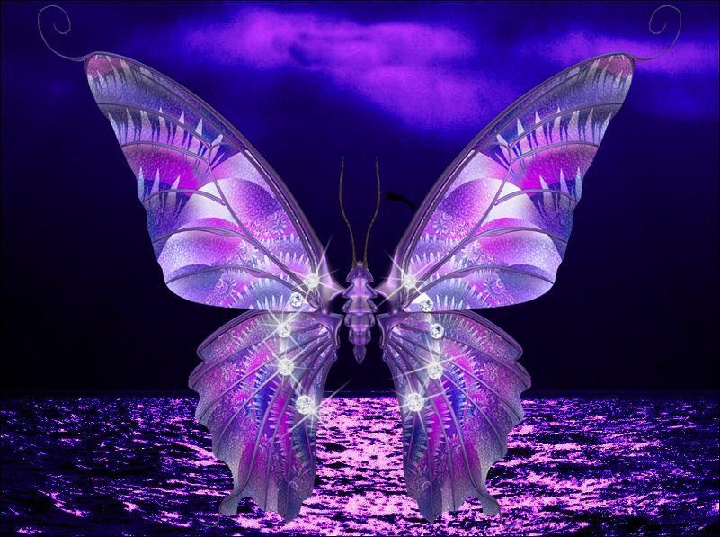 Imagenes mariposas gratis para celular - Imagui