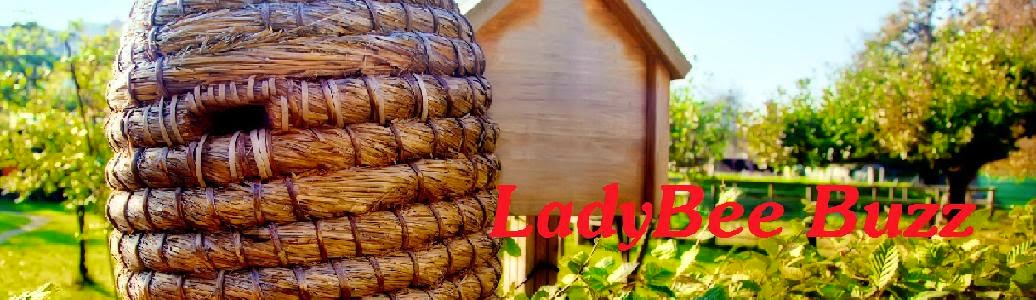 LadyBee Buzz