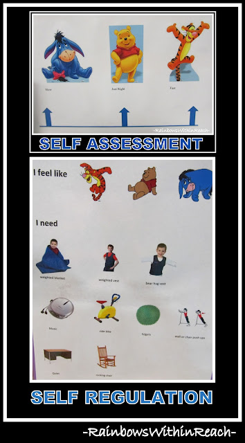 photo of: Self Assessment Leads to Self Regulation (Visual Cues RoundUP via RainbowsWithinReach)