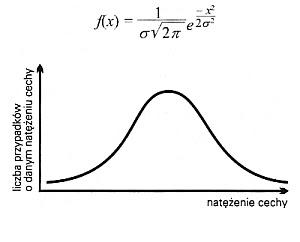 Krzywa Gaussa