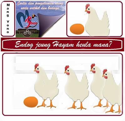 Telur dan Ayam duluan mana?.
