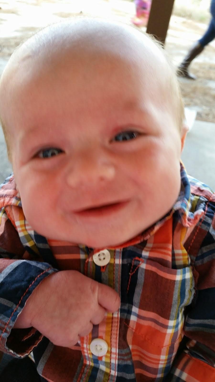 Radley - 2 months old