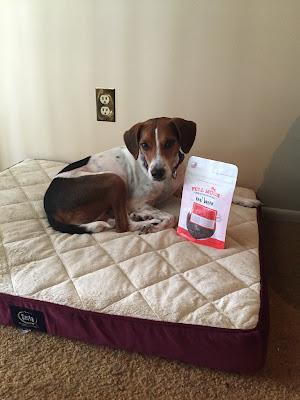 Jasmine adores Full Moon bacon treats