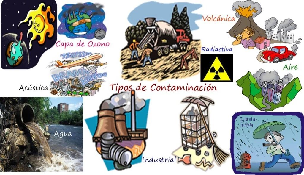 Ecosistema Imágenes De Archivo, Vectores, Ecosistema Fotos