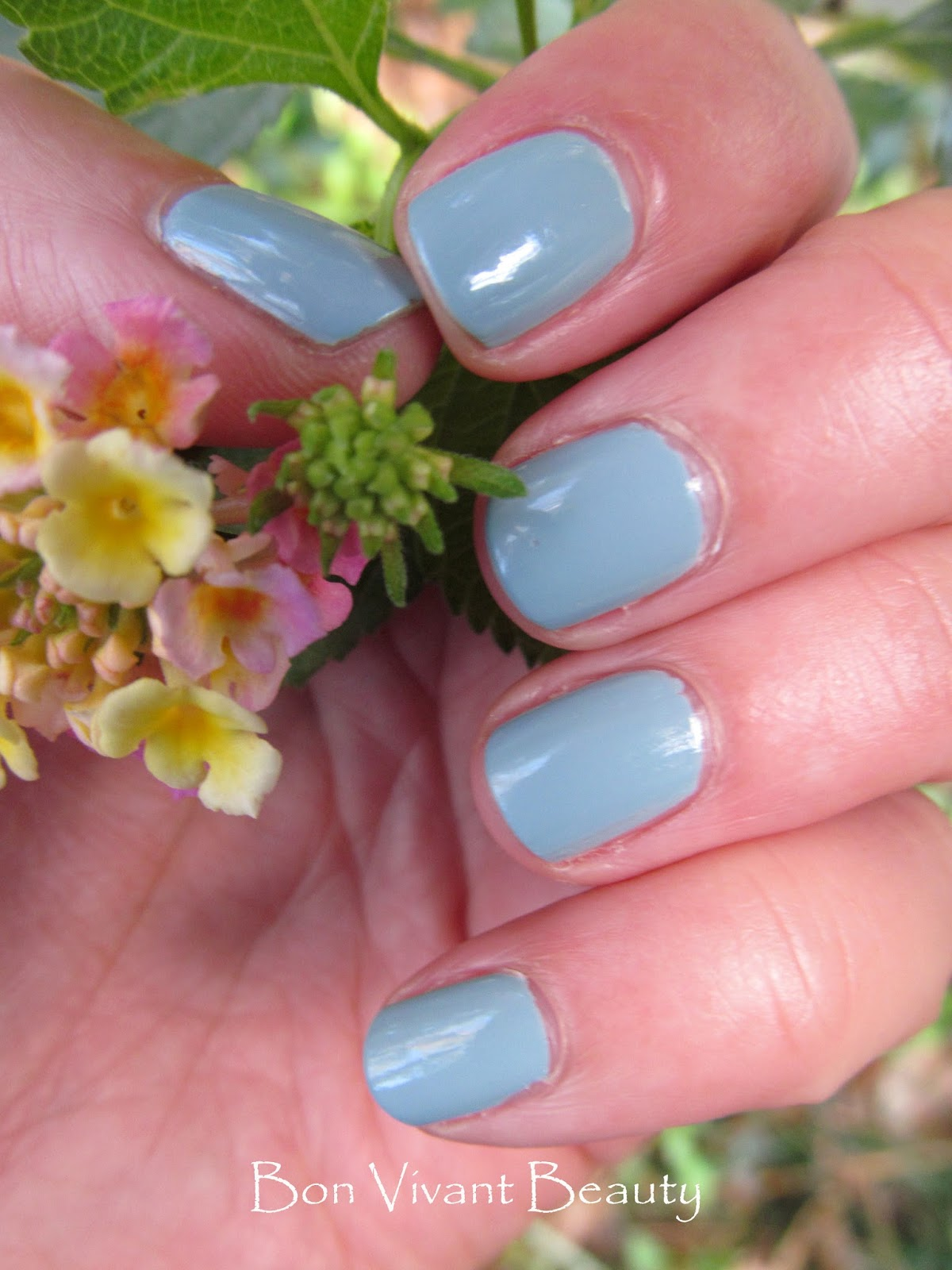 Bon Vivant Beauty: Pantone Serenity Color of the Year and Zoey by  #9F2C34