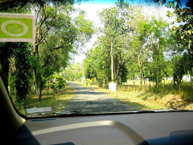 My perfect idea of a road trip