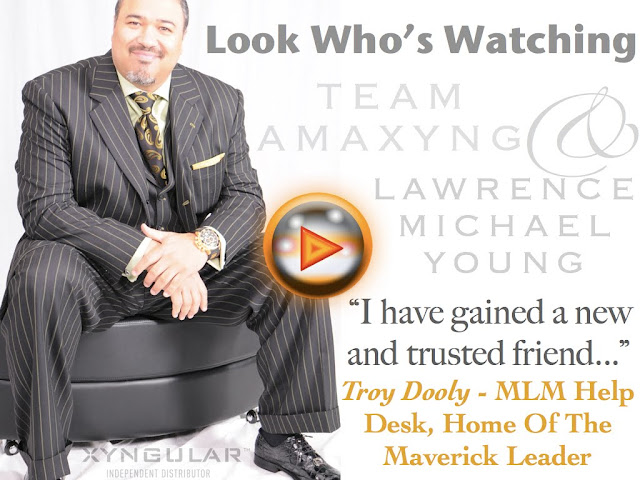 Troy Dooly ~ MLM Help Desk Takes A Closer Look At Team Amaxyng