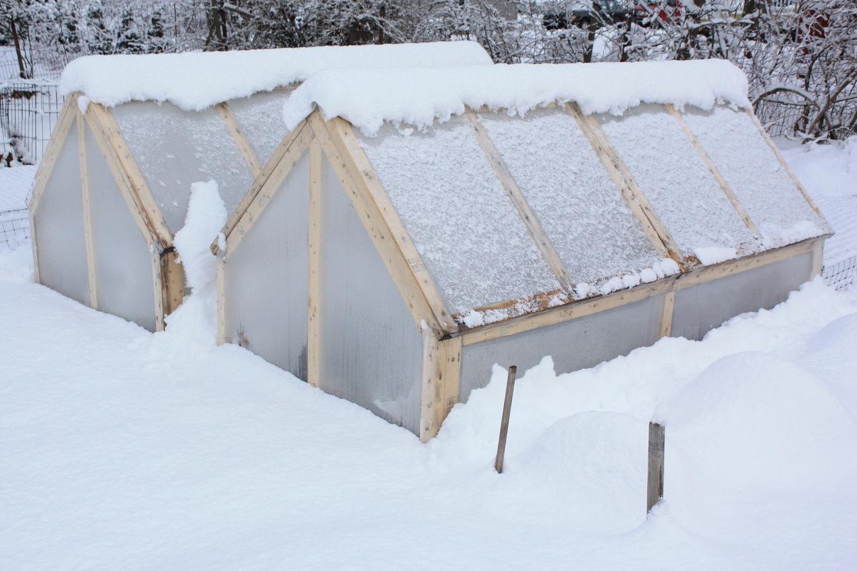 Bepa\'s Garden: Cold Frame (mini-greenhouse) Feedback