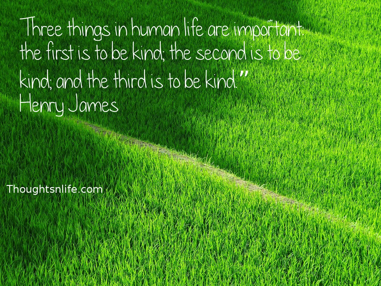 "Thoughtsnlife.com: Three things in human life are important: the first is to be kind; the second is to be kind; and the third is to be kind."" Henry James"
