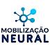 Curso de Mobilização Neural da Voll