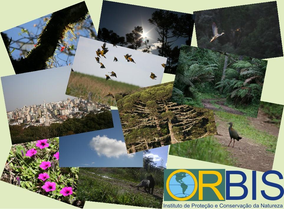 Instituto Orbis de Proteção e Conservação da Natureza