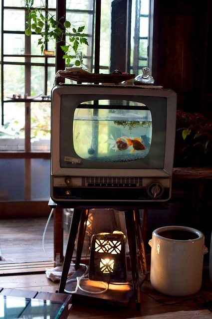 Dishfunctional designs upcycled repurposed vintage for Aquarium meuble tv