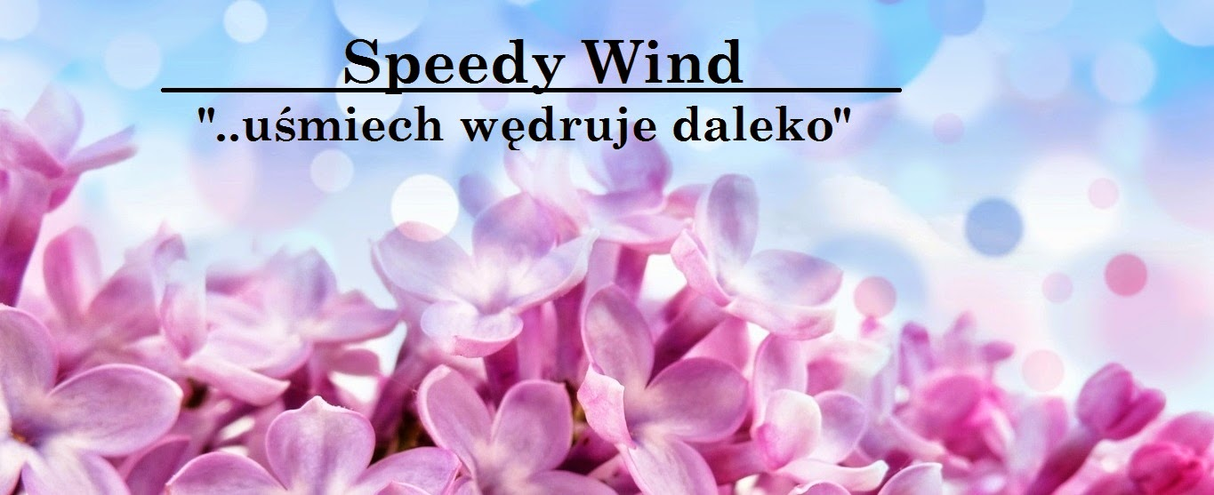 Speedy Wind