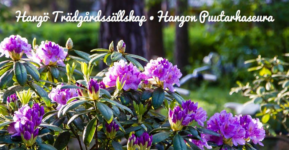 Hangö Trädgårdssällskap - Hangon Puutarhaseura