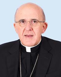 Mons. Carlos Osoro Sierra, Ordinar / Ordinario