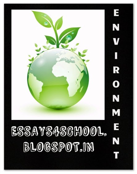 essay plants our friends