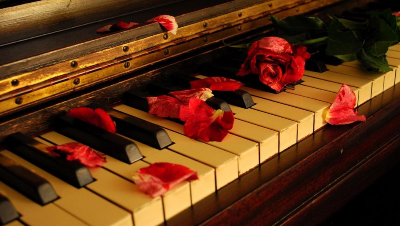 http://3.bp.blogspot.com/-BO97NJTdvzM/T6dm8qMJyuI/AAAAAAAABSo/5DYkgwYUkv0/s1600/red-rose-petals-instagram-photos,1360x768,66520.jpg