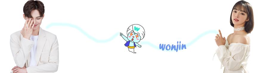 Operasi Plastik Wonjin