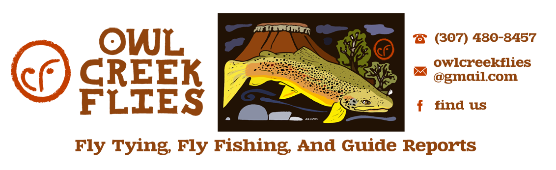 Owl Creek Flies - Bighorn River, Thermopolis - Fly Fishing Guide Service