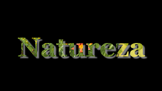 Titulo Natureza com sombra 1920x1080 fundo preto