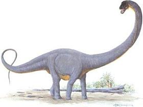 supersaurus+vvianae 10 Dinosaurus Dengan Ukuran Paling Besar